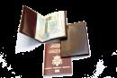Passport holder #100